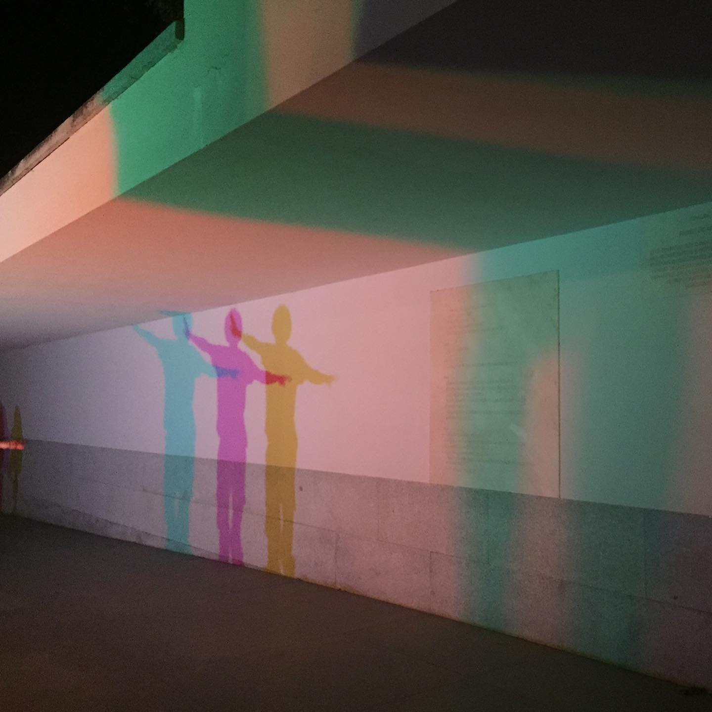 Há Luz no Parque 2020 #haluznoparque #haluznoparque2020 #desenhodeluz #lightdesign @fundacao_serralves @paula_doutel_rainha @joana.mendo